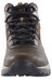 Columbia Newton Ridge Plus II Waterproof Shoes Men Cordovan/Squash